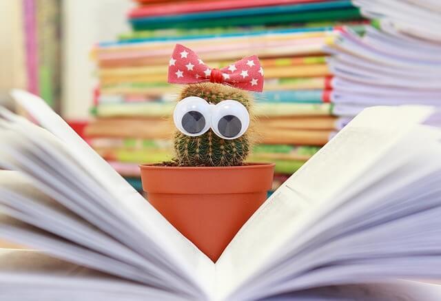 Literatur Empfehlungen